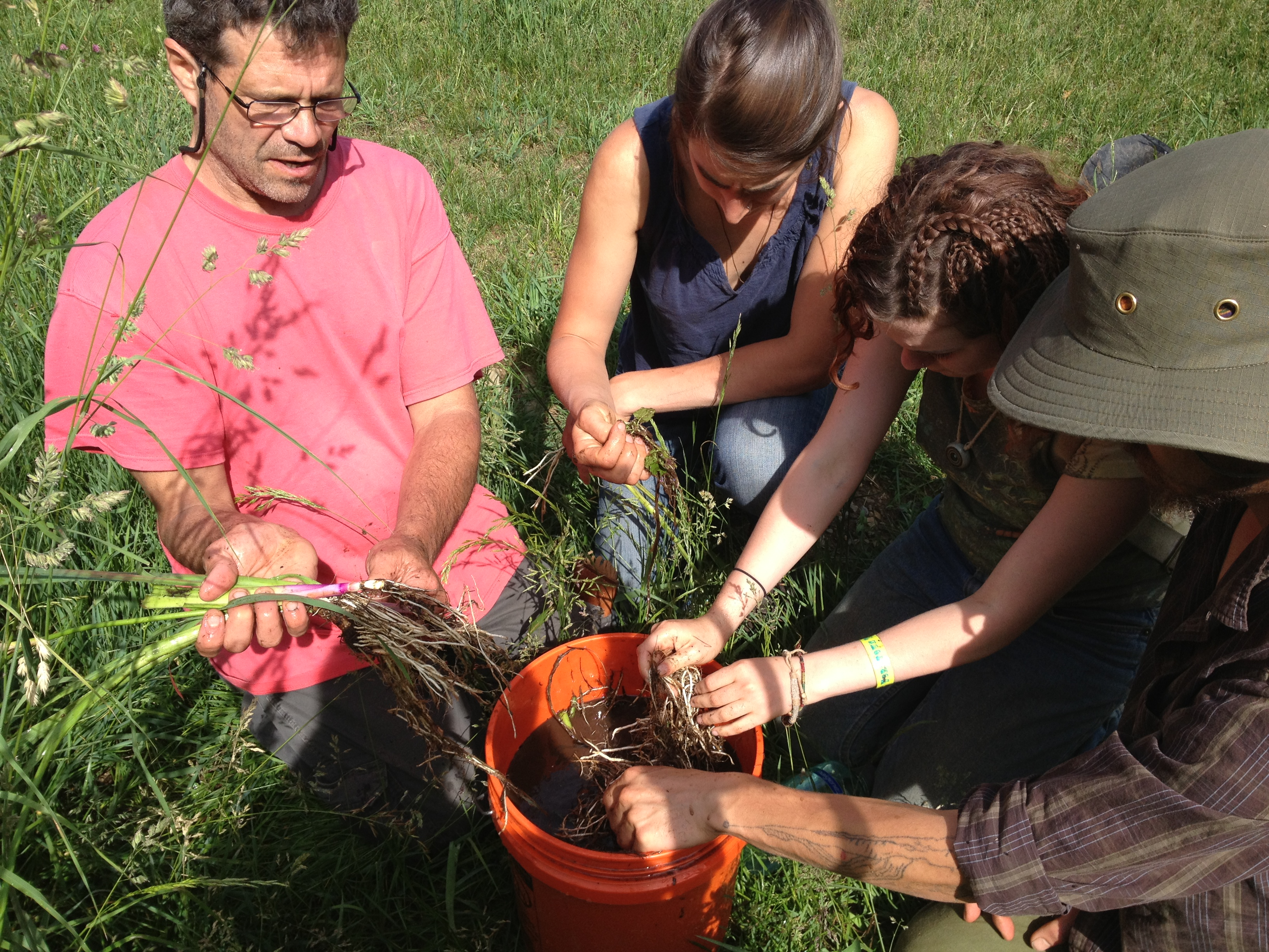 herbalist course and herbal workshops outdoors