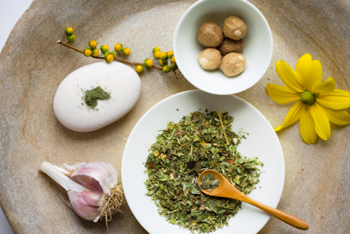 How to become an herbalist with ongoing courses from Clearpath.