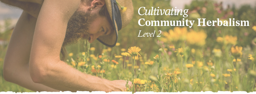 How to become an herbalist with Community Herbalism.