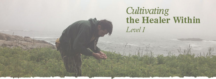 Herbalist Training: Cultivating the Healer Within