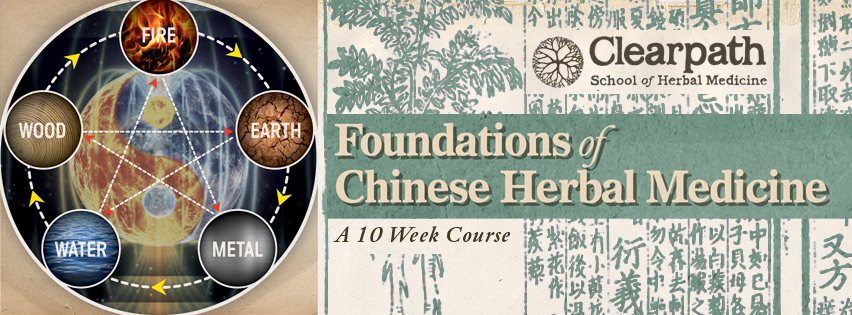 How to become an herbalist with Foundations of Chinese Herbal Medicine.