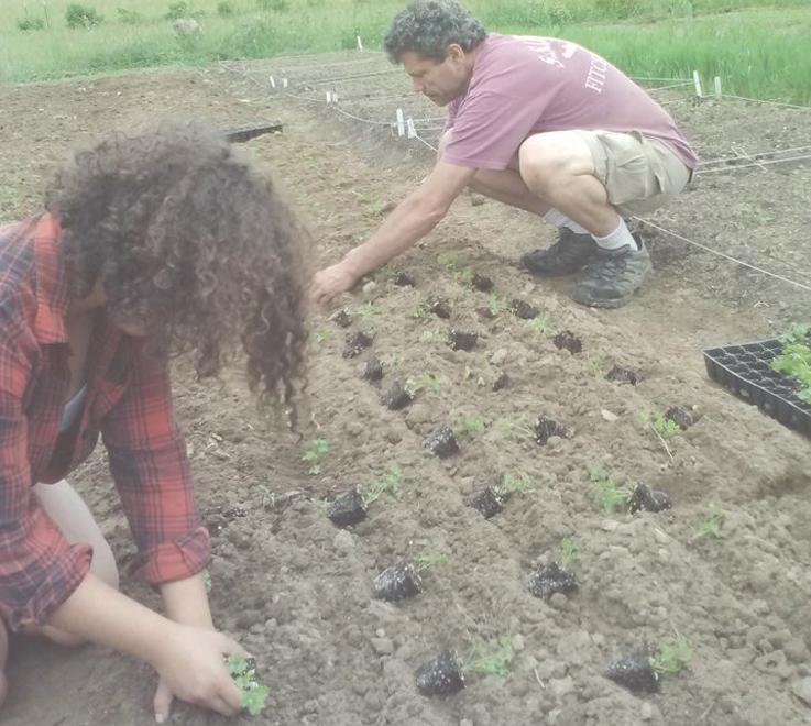 herbalist classes in the garden.