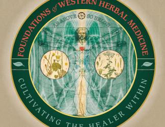 Herbal Holistic Medicine and Allopathic Medicine: A Comparison