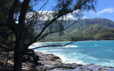Kauai Work Retreat, Spring Break 2017 (Part Two)