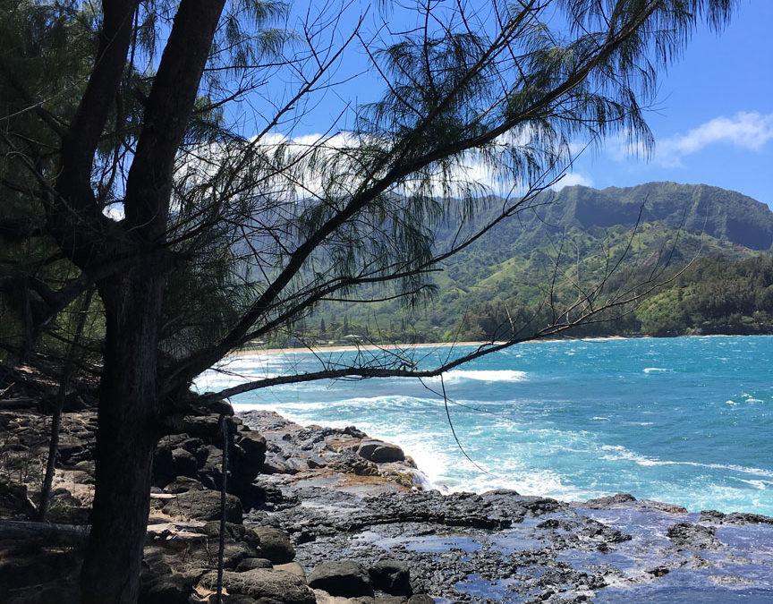 Kauai Work Retreat, Spring Break 2017 (Part Two)